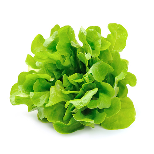 Saladai